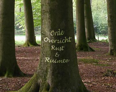 Professional Organizer Noord-Holland, Alkmaar, Hoorn en omgeving - Lapien Organizing
